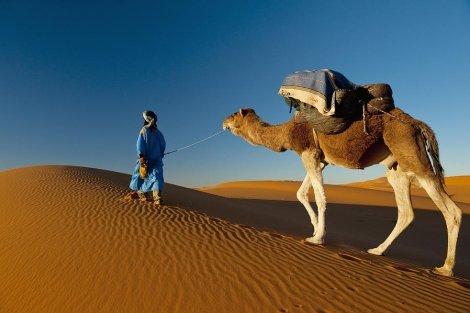 МАРОКО от А до Я, имперските столици и Сахара в една екскурзия: Самолетен билет с чартър + 7 нощувки със закуски и вечер