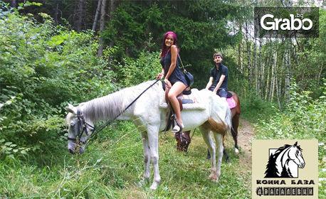 4 урока по конна езда, плюс 2 часа разходка с кон във Витоша планина