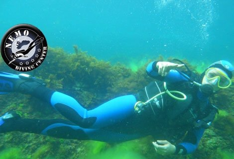 Готови ли сте за незабравими Летни Приключения? Открийте подводния свят на Черно Море с програма за начинаещи от водолаз