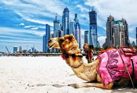 ШОК ЦЕНА от 720 лв. за ДУБАЙ! Самолетен билет + 7 нощувки със закуски в хотел Ibis Al Rigga 3*, Premium