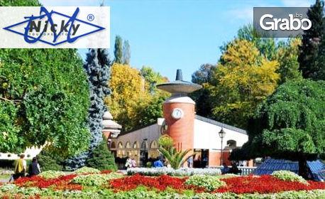 За 3 Март в Сърбия! Посети Ниш, Върнячка баня и Крушевац с 2 нощувки със закуски и вечери, едната празнична, обяд и тран