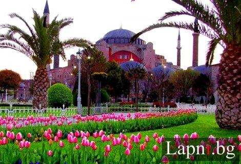 Фестивала на лалето в Истанбул 2019! Транспорт с автобус + 2 нощувки в хотел 3* + Екскурзоводско обслужване САМО за 94 лв. на Човек!