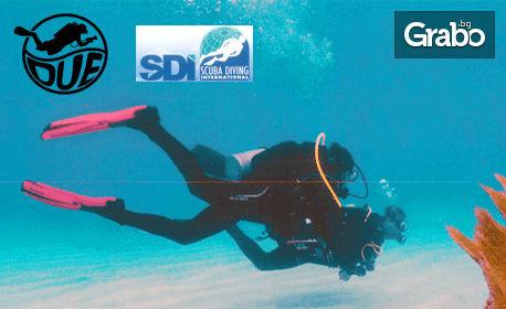 30 минути шнорхелинг или водолазно гмуркане Scuba Discovery, плюс екипировка и инструктор