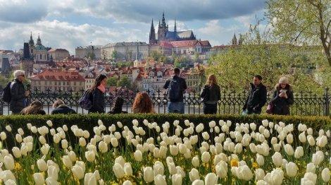САМО 265 лв.! ПРАГА - ЗЛАТНИЯТ ГРАД! Транспорт с АВТОБУС + 3 нощувки със закуски в Прага + Посещение на шопинг градчето