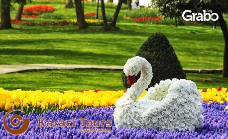 През Март или Април в Истанбул! 2 нощувки със закуски, плюс транспорт и посещение на Одрин