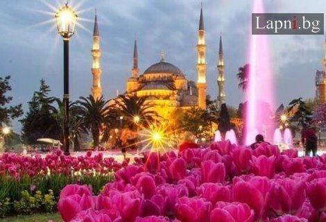 Фестивала на лалето в Истанбул 2019! Транспорт с автобус + 2 нощувки в хотел 2* + Екскурзоводско обслужване  + Посещение