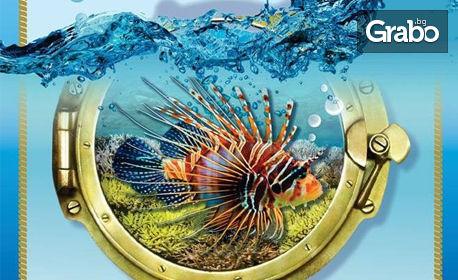 """Вход за двама за изложба на екзотични рибки """"Подводен свят"""" в Китен"""