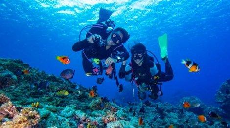 СУПЕР ЦЕНА! Готови ли сте за Подводно Приключение: ГМУРКАНЕ в акваторията на Созопол от Водолазен център Светът на Мълчанието само за 45 лв.
