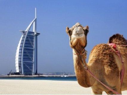 АБУ ДАБИ И ДУБАЙ! Самолетен билет София с директен полет с Fly Dubai с вкл. самолетни такси и трансфери + 7 нощувки със закуски в хотели 3* + Целодневни екскурзии на Дубай и Абу Даби + посещение на Малката Венеция на Дубай – Medinat Jumeirah и най-но