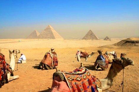 Перлите на ЕГИПЕТ, ХУРГАДА, Хотел AMC Royal 5*: ЧАРТЪРЕН ПОЛЕТ + 6 нощувки на база ALL INCLUSIVE + 1 Нощувка със закуска и вечеря в Кайро + Екскурзия до Пирамидите само за 1130 лв. на ЧОВЕК